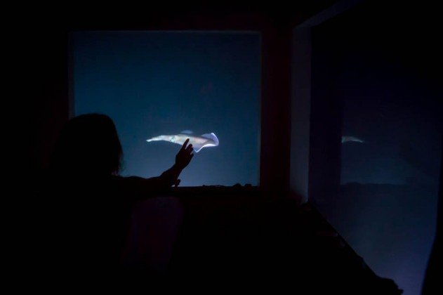 hotelszoba-a-vizen-viz-alatti-haloszobaval-11